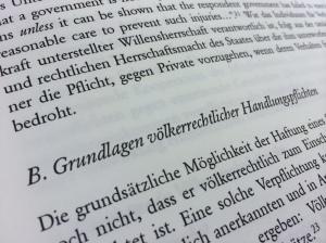 Textauszug_Grundlagen_Völkerrecht